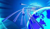 拥有高效纤维网络的人比结构网络效率较低的人拥有更多的一般知识