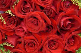 媒体提醒 玫瑰是红色 紫罗兰是蓝色 糖是甜美的 但是要交税吗